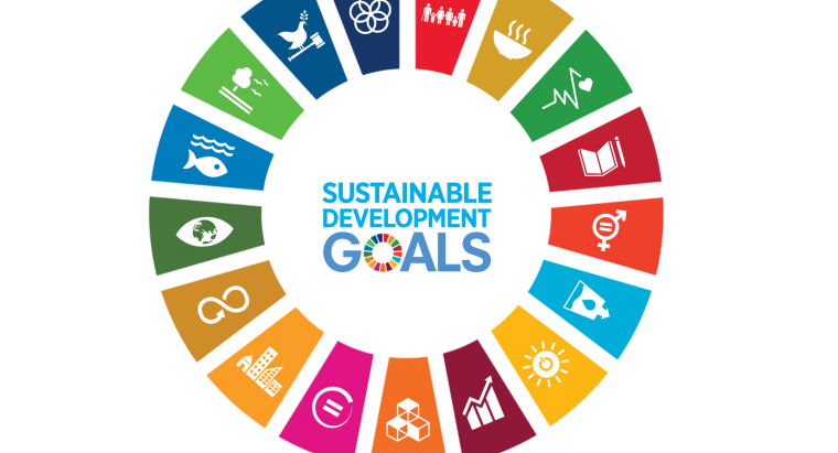 Here's how we are meeting the United Nations Sustainable Development Goals 5 and 8.