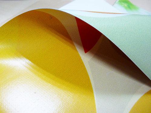 Double Sided Printing Tarpaulin (440g)