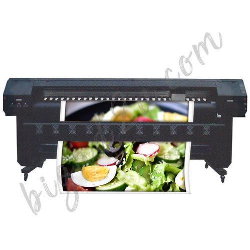 Premier Eco Solvent Printer (3.2M)