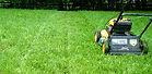 Mowing Green Grass.jpg