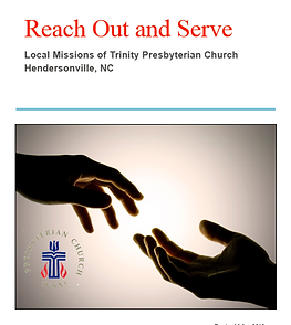 Reach Out and Serve Graphic.png