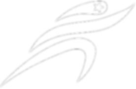 logo+white+trans+cropped.png