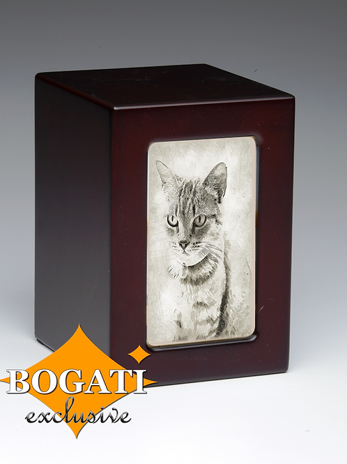 Tabby Cat Bogati Exclusive 45 cu.