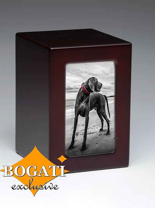 Black Dog Bogati Exclusive 75 cu.