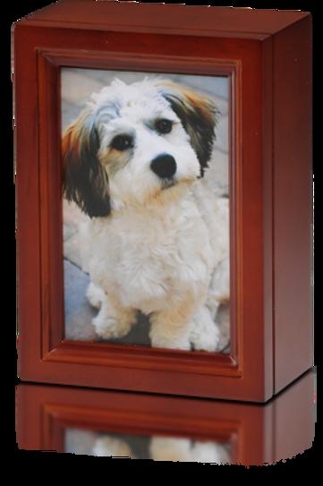 PPVH 4″ x 6″ Birch Wood Photo Frame Pet Urn in Cherry – B014-Cherry – 45 cu. in.