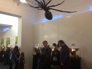 Wystawa pająków