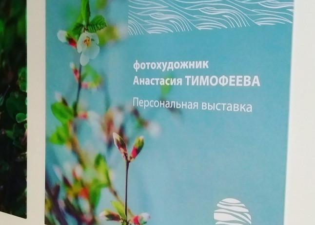 ФОТОВЫСТАВКА В РАМКАХ ГОДА ЭКОЛОГИИ В РОССИИ