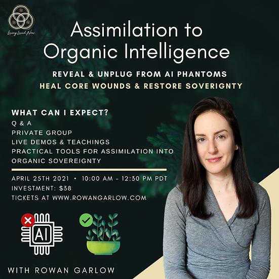 April 2021 Online Workshop: Assimilation to Organic Intelligence