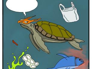 Oceanic Plastic Pollution