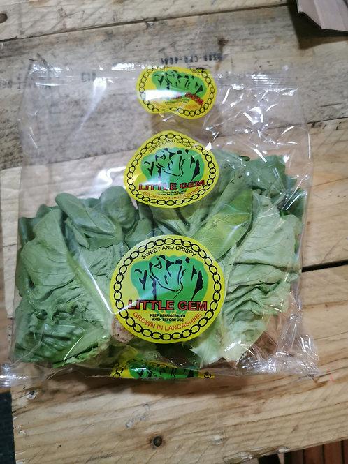 Little gem lettuces pack 2