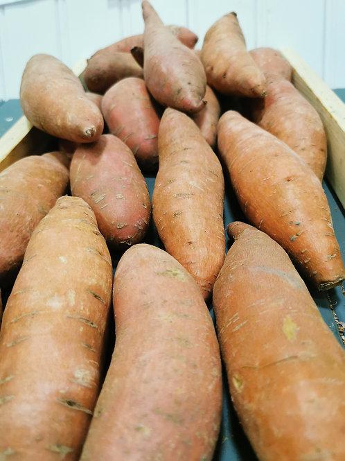 Sweet Potato per kg