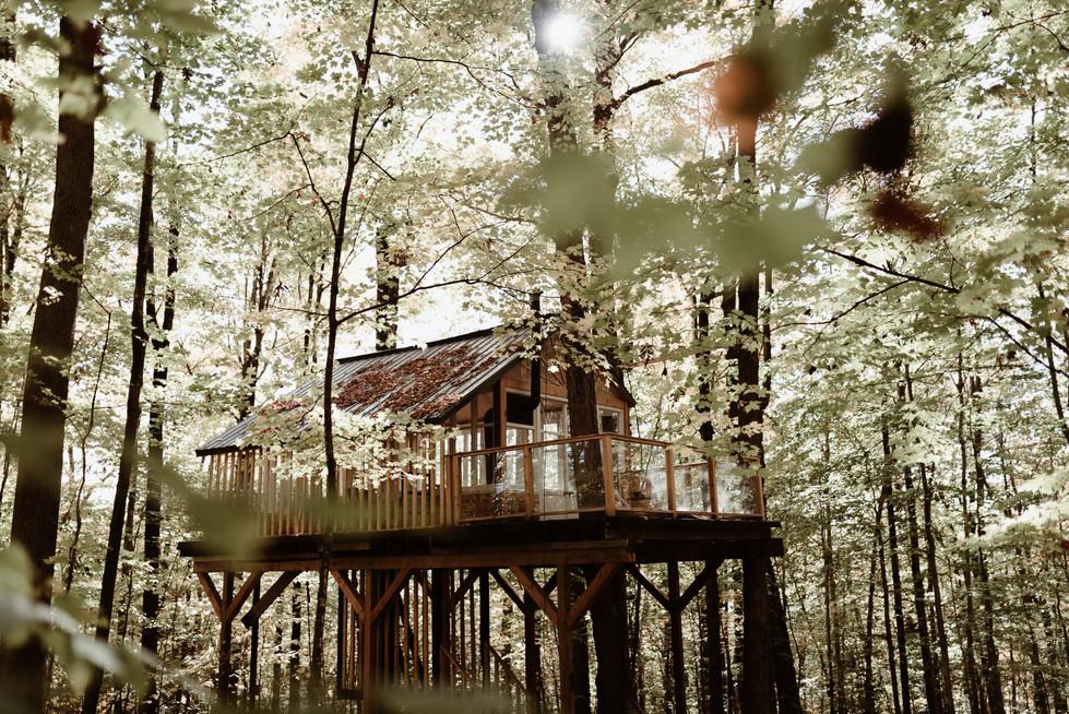 SurInvitationSeulement_JessicaGrenonPhotographe_TreeHouseElopement