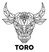 LOGO TORO.JPG