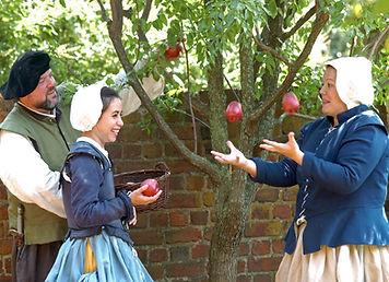 Apples LOM.jpg