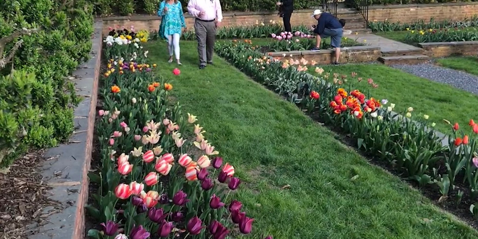 Event: Gardens Open Late in April