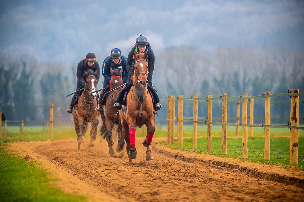Izzie Marshall, category B rider, putting in the work ahead of the pointing season. Alan and Lawney Hill Racing, March 2021