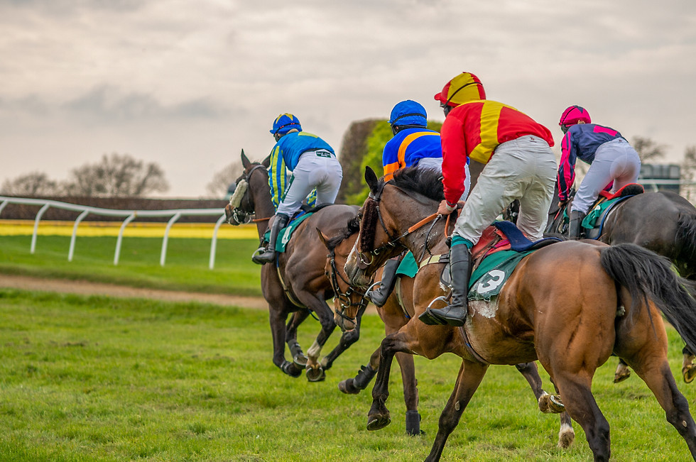 Haydon Point-to-Point Conditions Level 2, 5yo and up race. May 2021
