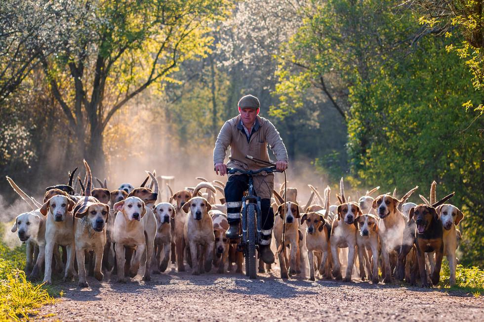 Stuart Radbourne, Huntsman and Master of the Avon Vale Foxhounds