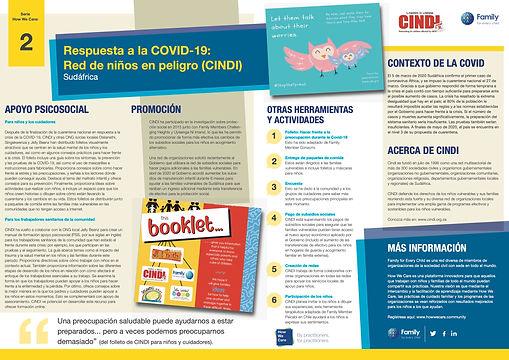 Briefing paper-CINDI-espanol.jpg