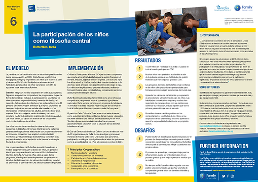 Briefing paper_Butterflies_Spanish.png