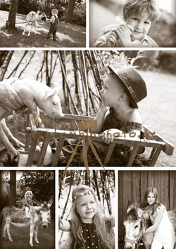 Collage_outdoor_Sepia