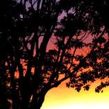 Sunset/Queen St.
