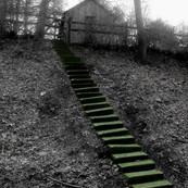 House & Steps/Radnor Trail