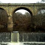 Bridge/Wissahickon Valley Park