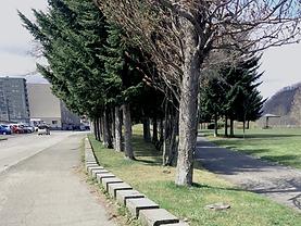 石山北公園1.png