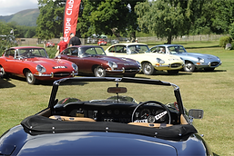 E-type Jaguars