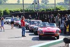 A line of E-types ready to cavalcade up the Hill, Shelsley Walsh