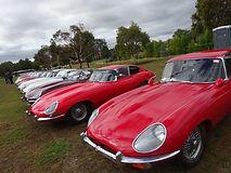 Australian 50th National Jaguar Rally
