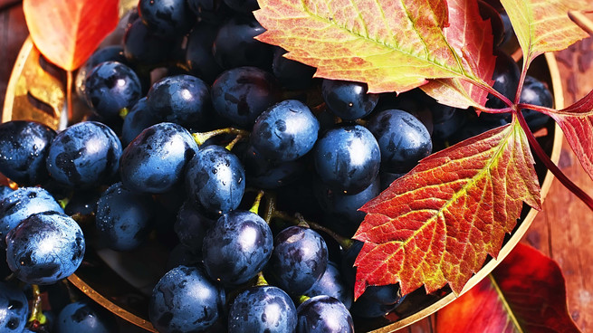 Wine to Fall For this Autumn