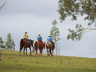 HUNTER VALLEY HORSERIDING