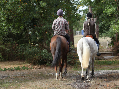 Take in a New View… On Horseback!