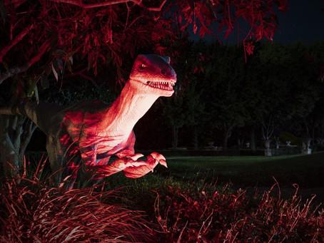 Mega Creatures + Night Safari