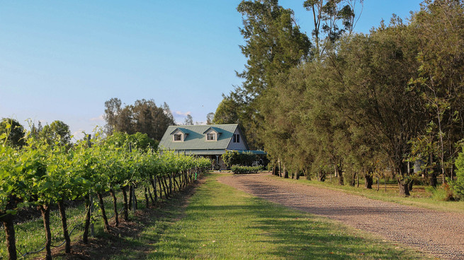 The Art of Wine at Emma's Cottage
