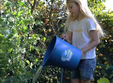 Lower Hunter encouraged to maintain new water saving behaviour