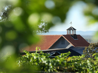 Hunter Valley Writing & Wine Weekend