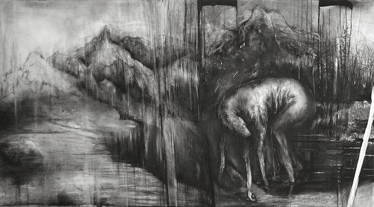 Nocturne Canin (2).jpg