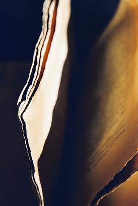 Le Parti Pris des livres (photo).tiff