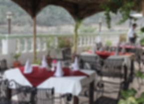 Organic India Restaurant Hot Spring Health Care Shimla Tattapani