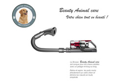 brosse animaux-red-1.jpg