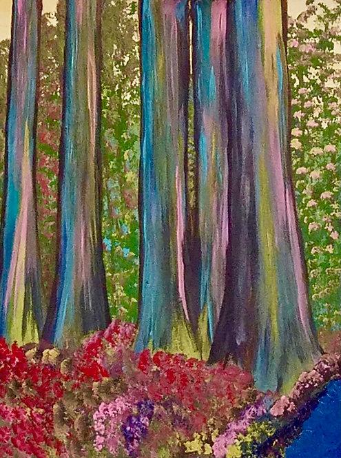 THE AUSTRALIAN RAINBOW FOREST