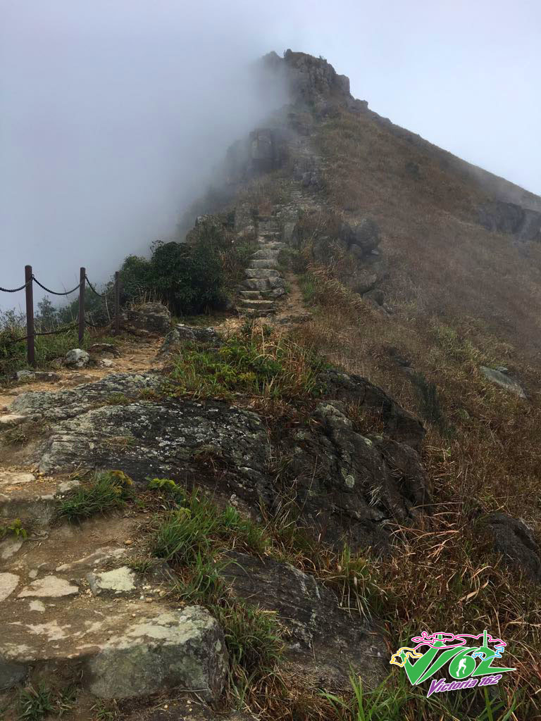 Summit of Lantau Peak