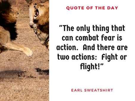 Fight or Flight - What Are You?