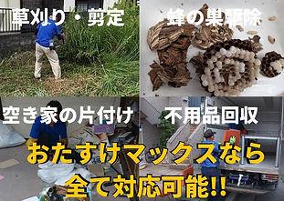 尼崎のおたすけマックスなら、草刈り、蜂の巣・害虫駆除、空き家の片付け、不用品回収、全てに対応可能