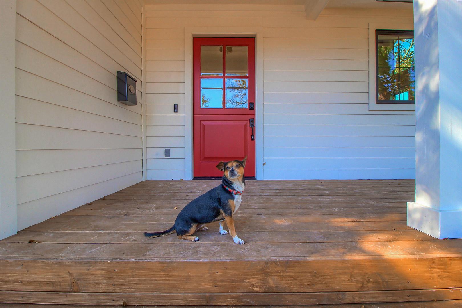 Home Renovation Accent Door on Bouldin in Austin, TX