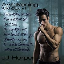 Awakening (10).png