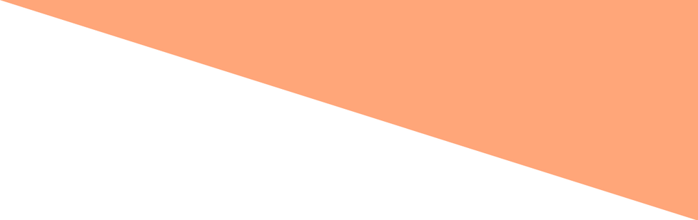 EKINN TEMPLATE LIGHT ORANGE.png